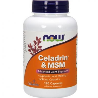 Celadrin & MSM 500mg 120 kaps.