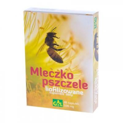 Mleczko pszczele liofilizowane 48 kaps.