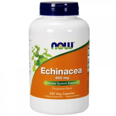 Echinacea Root 400mg 250 kaps.